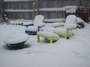 Our aderondike chairs in the snow.